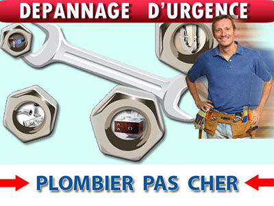 Canalisation Bouchée Coulommiers 77120